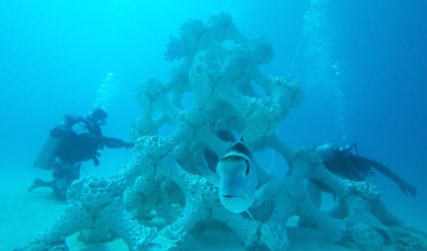 Barrière de corail par impression 3D