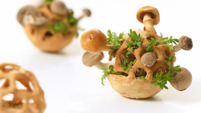design d'aliments 3D